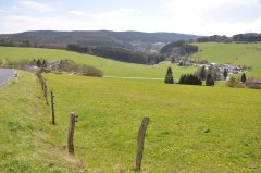 Eigelbach4.jpg